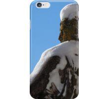 Snowy Statue  iPhone Case/Skin