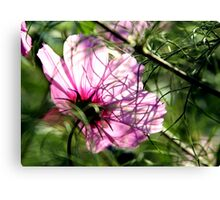 Dreaming of Summer Canvas Print