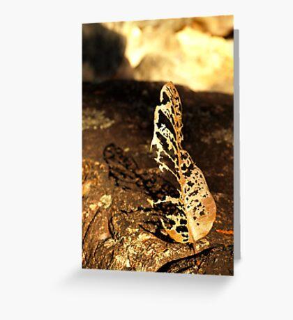 Dead leaf shadow Greeting Card