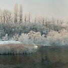 kingdom of winter - panorama by Patrycja Makowska
