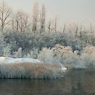 kingdom of winter lake... by Patrycja Makowska
