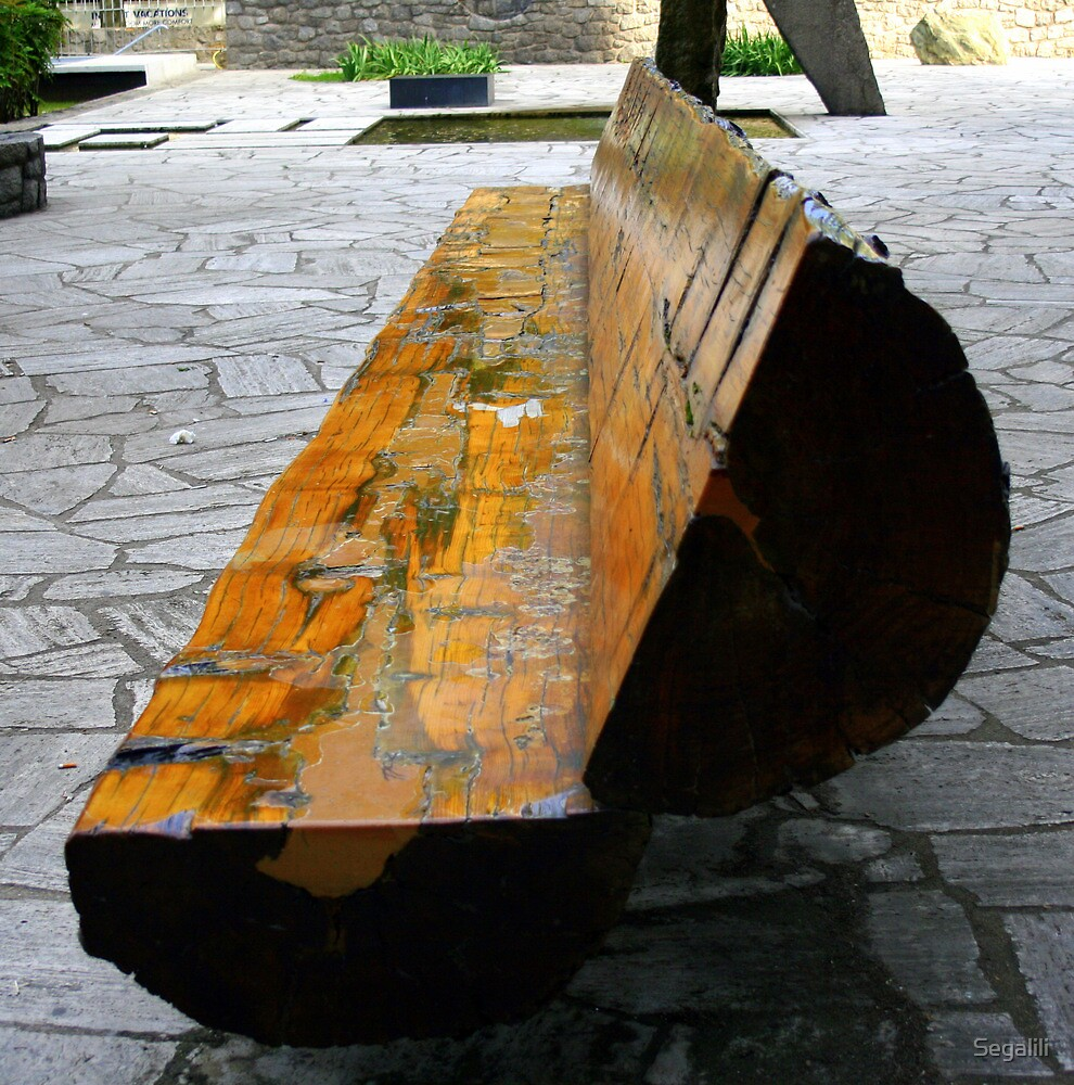The Wooden Bench by Segalili