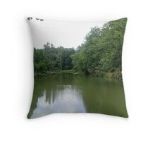 Green mirror... Throw Pillow
