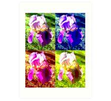 Colorized Iris Art Print