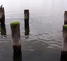 Remains of The Jetty by robertemerald