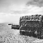 Hay Bales in the Snow by Michael Palmer