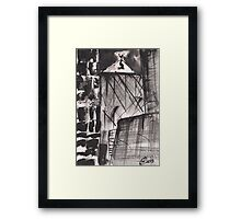 ONE ON THE TOP(C2010) Framed Print