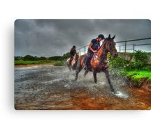 Water Horses HDR  Canvas Print