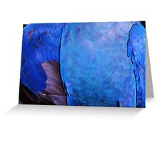 Oh Blue One. Greeting Card