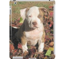 """Spice"" In The Fall Leaves iPad Case/Skin"