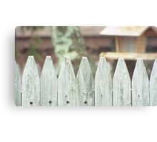 Looking Over a Fence Canvas Print