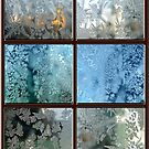 FROSTED WINDOWS  by nonarom