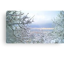 Awesome landscape  Metal Print