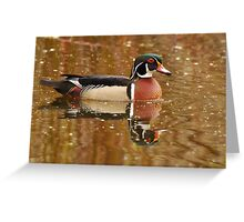 Wood Duck and Reflection Greeting Card