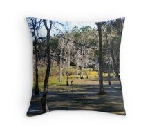 08-119 ~ Swamp in the sunlight Throw Pillow