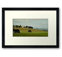 Spray Farm,Bellarine Peninsula Framed Print