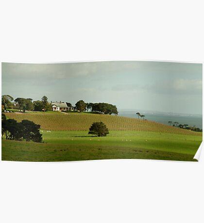 Spray Farm,Bellarine Peninsula Poster