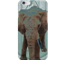 One tusked Elephant iPhone Case/Skin