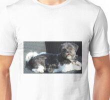 Bailey the Shih Tzu Unisex T-Shirt