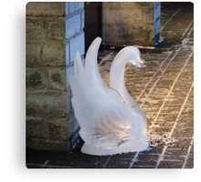 A  swan lost in town Canvas Print