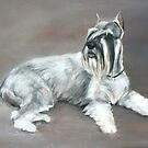 Standard Schnauzer Oil Painting by Charlotte Yealey