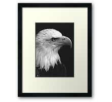 Patriot I Framed Print