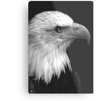 Patriot I Metal Print