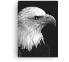 Patriot I Canvas Print