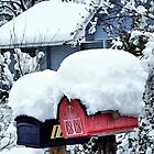 Snow Mail by Glenna Walker