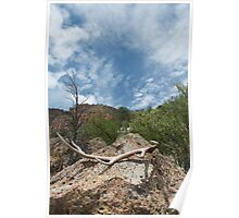 Antler, rock and sky: Bland Canyon Poster