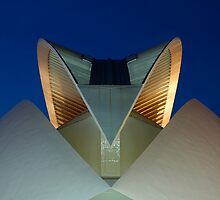 Palau De Les Arts - The Feather - CAC by Valfoto