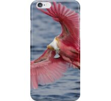 Spoonbill in Flight iPhone Case/Skin