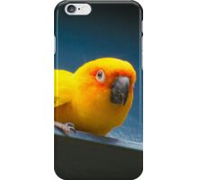 Yellow bird iPhone Case/Skin