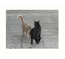 Cat Argument Art Print