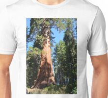 South California redwood,  giant sequoia tree. Unisex T-Shirt