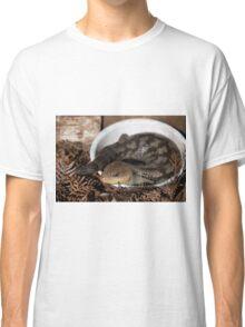 Blue tongue lizard Classic T-Shirt