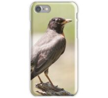 That's A Fine Looking High Horse iPhone Case/Skin