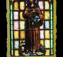 St. Francis of Assisi by DAdeSimone