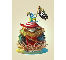 Pirate's Nest Photographic Print