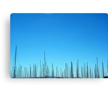 Pick up Sticks. Canvas Print
