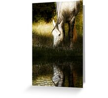 Just Grazing Greeting Card