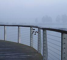 Foggy Morning Flight Plan by Salien