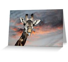 Goofy Giraffe Greeting Card