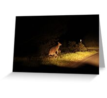 Kangaroo Family Greeting Card