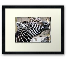 Stripes Luncheon!! Framed Print