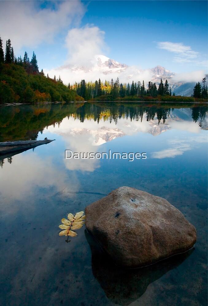 Majesty Hidden by DawsonImages