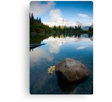 Majesty Hidden Canvas Print