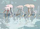 Lesser Flamingos Feeding by arline wagner