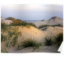 South Padre Island Sand Dune Poster