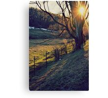 SUNBEAM KISSES Canvas Print